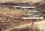 Pedernales-River-February-2013-5