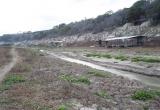 Pedernales-River-February-2013-6