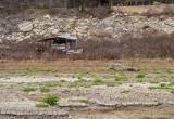 Pedernales-River-February-2013-7