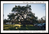 gruene-texas-small-town-photos-5
