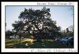 gruene-texas-small-town-photos-5
