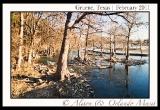 guadalupe-river-gruene-texas-2