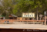 sherwood-forest-renaissance-faire-texas-2011-25
