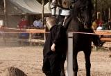 sherwood-forest-renaissance-faire-texas-2011-28