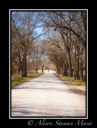vanishing-texas-bastrop-county-rural-america-4