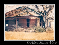 vanishing-texas-bastrop-county-rural-america-5