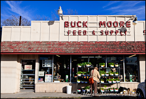Buck Moore Feed Store in Austin, Texas